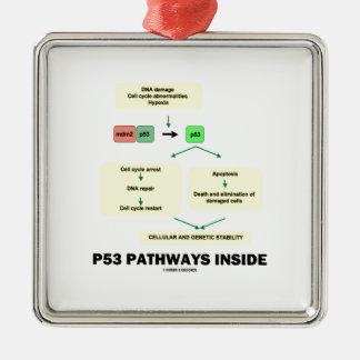 P53細道の内部(細胞の分子生物学) メタルオーナメント