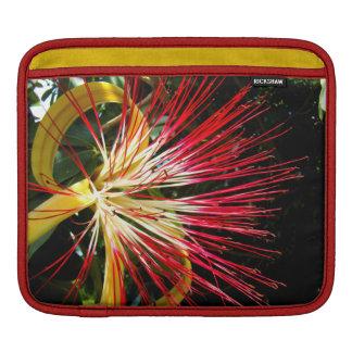 Pachira Aquatica iPadスリーブ