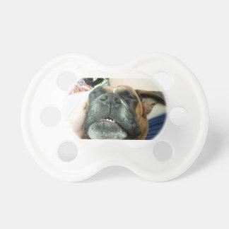 paficier睡眠犬 おしゃぶり