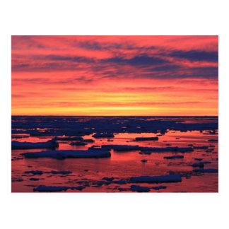 Palmerの場所の日没 ポストカード