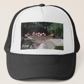Palmitos公園 キャップ