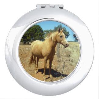 Palominoの馬の美しい、