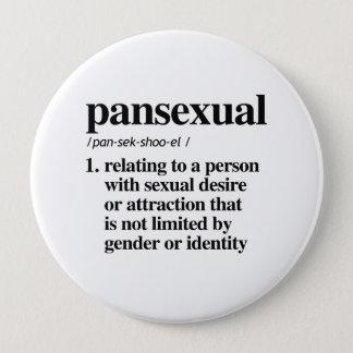 Pansexual定義-定義されたLGBTQの言葉- 缶バッジ
