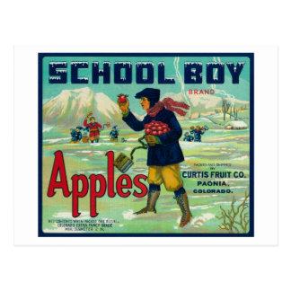 Paonia、コロラド州-生徒のAppleのラベル ポストカード