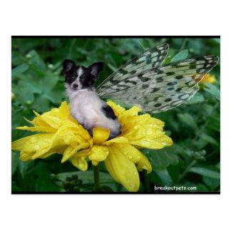 Papillonの妖精犬 ポストカード