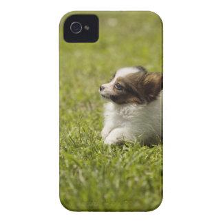 Papillon 2 Case-Mate iPhone 4 ケース
