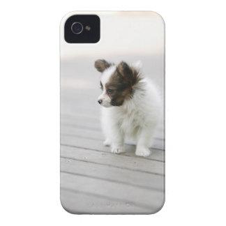 Papillon Case-Mate iPhone 4 ケース