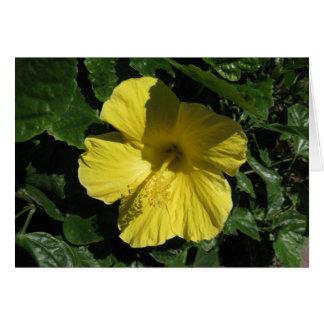 Pâques黄色い影 カード
