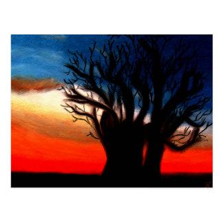 Pari|Chumroo|Baobob|木|郵便はがき ポストカード