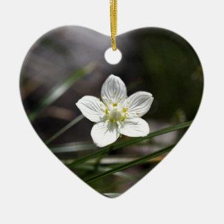 Parnassus (Parnassiaのpalustris)の沼地の草 セラミックオーナメント