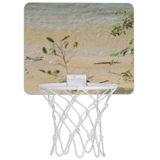 Parramattaの川のビーチの小型バスケットボールたが ミニバスケットボールゴール