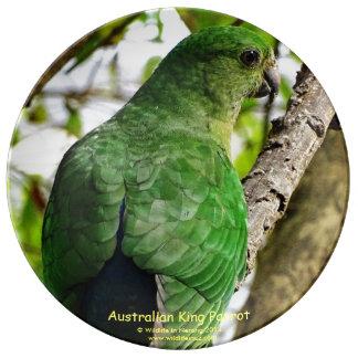 Parrotオーストラリアのメス王 磁器プレート