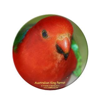 Parrotオーストラリアの王 磁器プレート