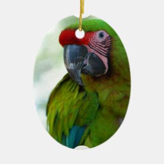 parrot-63.jpg セラミックオーナメント