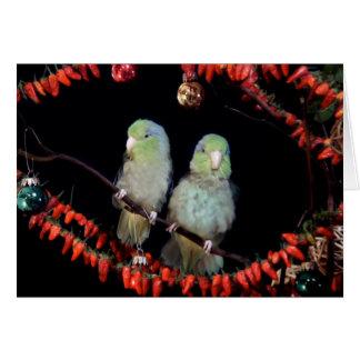 ParrotletsHolidayカード カード