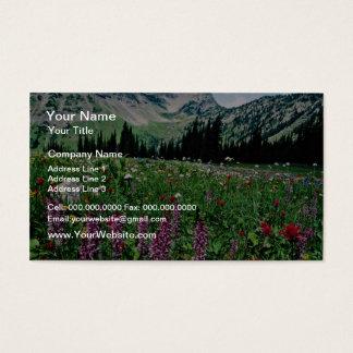Pasaytenの荒野の高山草原、Californ 名刺