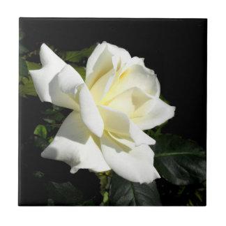 Pascaliの白いバラ タイル
