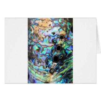 Pauaのアワビの青および緑の貝の詳細 カード