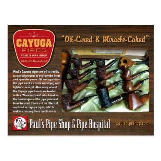 Paul's Cayuga Postcard ポストカード