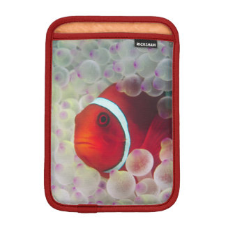 Paupauニューギニア、グレート・バリア・リーフ、 iPad Miniスリーブ