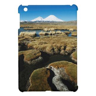 Payachalasの火山 iPad Miniケース