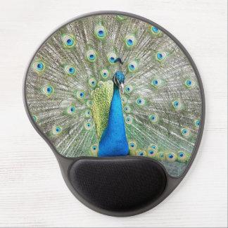 Peacock Plumage Photo ジェルマウスパッド