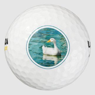 Pekinの白いアヒル-反射の自然の写真 ゴルフボール