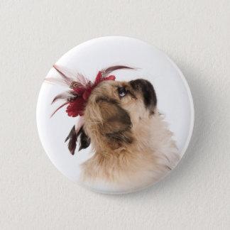 Pekingeseのかわいい子犬 5.7cm 丸型バッジ