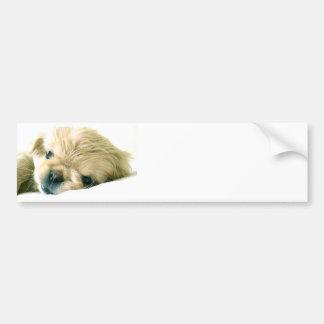 Pekingeseの子犬のバンパーステッカー バンパーステッカー