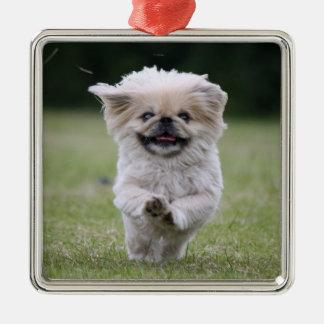 Pekingese犬のオーナメント、かわいい写真、ギフト メタルオーナメント
