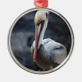 pelican.jpg メタルオーナメント