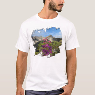 Pelly山のFireweed Tシャツ