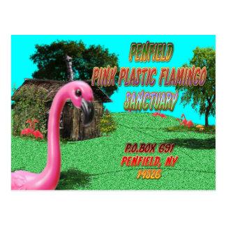 penfieldのピンクのプラスチックフラミンゴの聖域の郵便はがき ポストカード