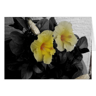 Personalized Yellow Hibiscus selective color photo カード