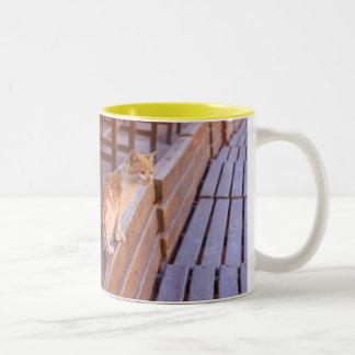 Petraの猫 ツートーンマグカップ