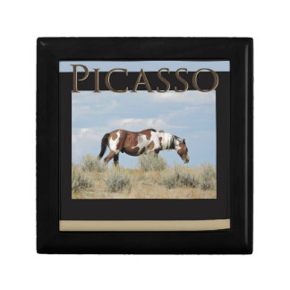 Picasso, Stallion of Sand Wash Basin, Colorado ギフトボックス