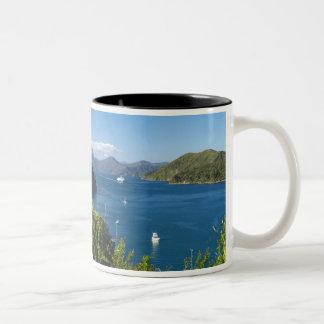 Picton港、南Marlboroughの音 ツートーンマグカップ