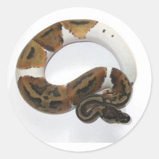piebaldの球の大蛇 ラウンドシール