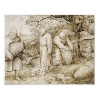Pieter Bruegel年長者-養蜂家 フォトプリント
