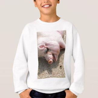pig-123619_1920.jpg スウェットシャツ