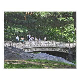Pinebankのアーチ橋、セントラル・パーク、ニューヨーク フォトプリント