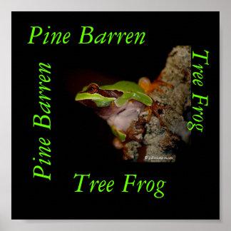 pinebarrentf10のアマガエル、不毛マツマツBa… ポスター