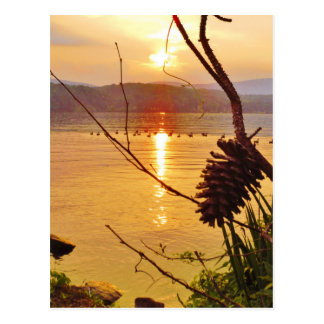 Pinecone湖の日没 ポストカード
