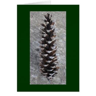 Pinecone カード