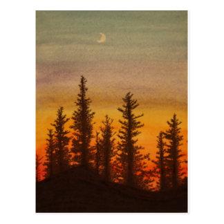 Pinetreeの日没 ポストカード