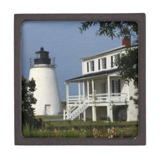 Pineyポイント灯台 ギフトボックス