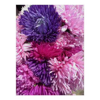 Pink And Purple Chrysanthemums ポスター