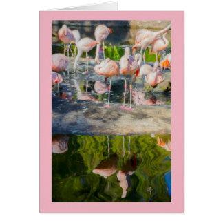 Pink Flamingos Blank Greeting Card カード