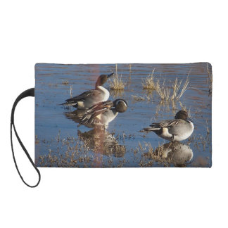 Pintailのアヒルの鳥の野性生物動物の池のバッグ リストレット