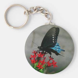 Pipevineのアゲハチョウの蝶Keychain ベーシック丸型缶キーホルダー